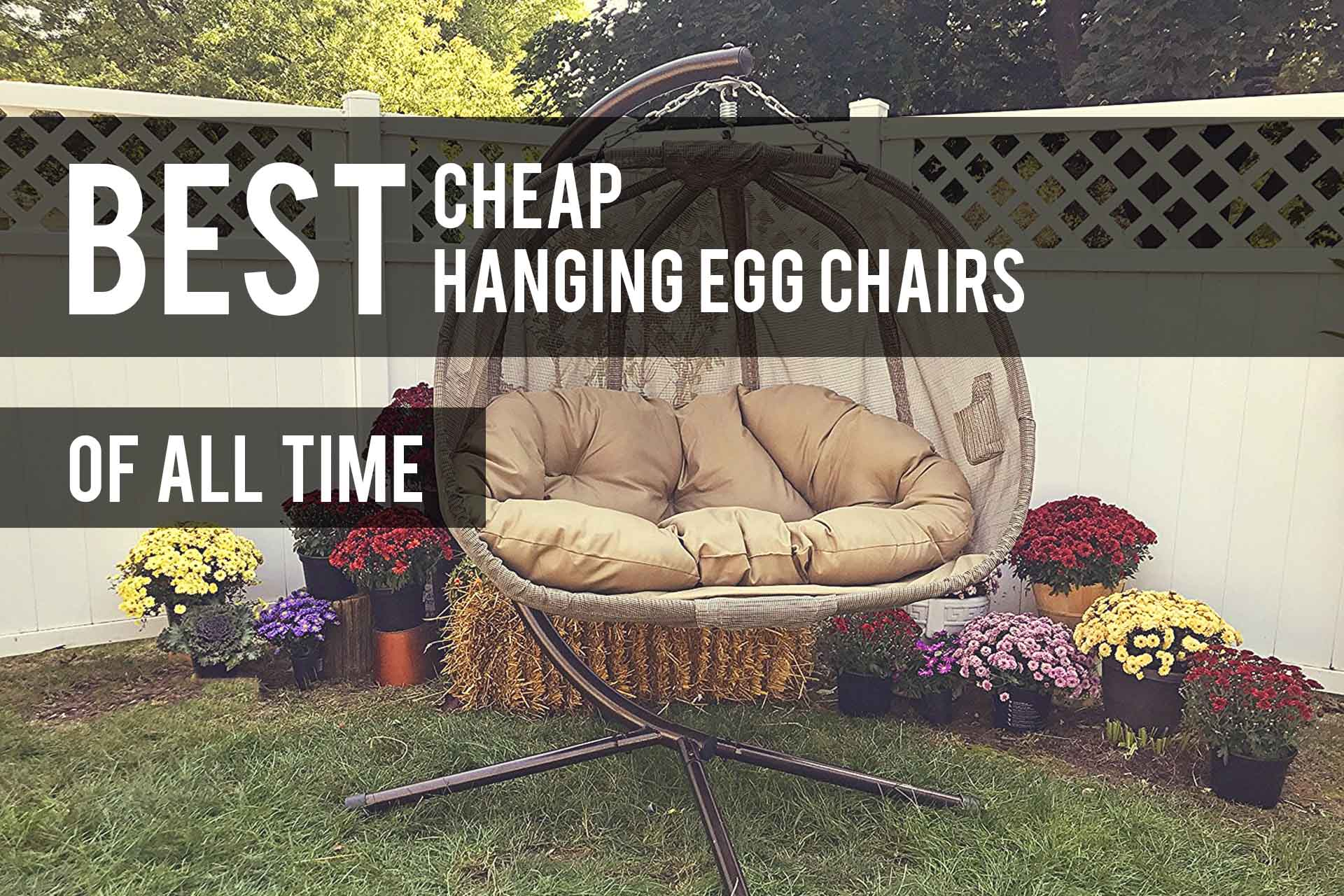 Best Cheap Hanging Egg Chairs 2020 Reviews The Patio Pro